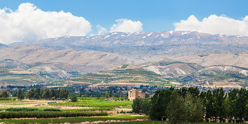 "MW 6 – BEQAA Region, NIHA ""Rose Water & Arak"""